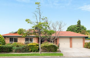 Picture of 5 Windsor Avenue, Clovelly Park SA 5042