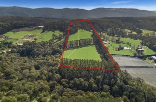 Picture of 3217 Bells Line Of Road, Bilpin NSW 2758