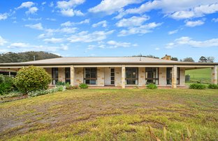 Picture of 186 Lachlan Road, Lachlan TAS 7140