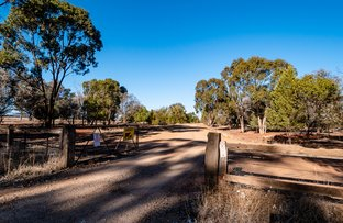 Picture of 658 Fifield Road, Condobolin NSW 2877