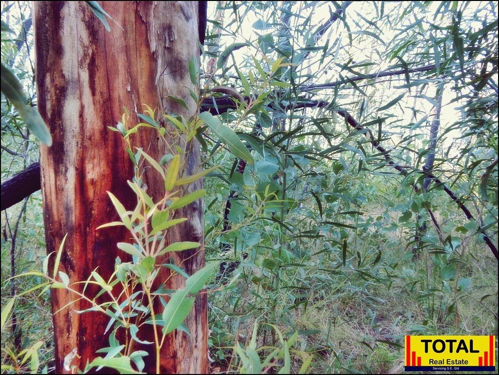 Lot 9 Basil Drive, Forest Ridge QLD 4357, Image 1