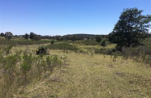 Picture of Lot 11/703 Bonds Road Hargraves, Mudgee NSW 2850