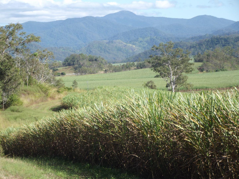 Mirani QLD 4754, Image 1