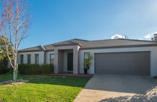 Picture of 8 Brambuck Avenue, Kialla VIC 3631