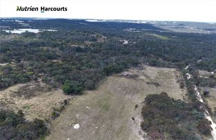 Picture of 494 Donnellys Castle Road, Pozieres QLD 4352
