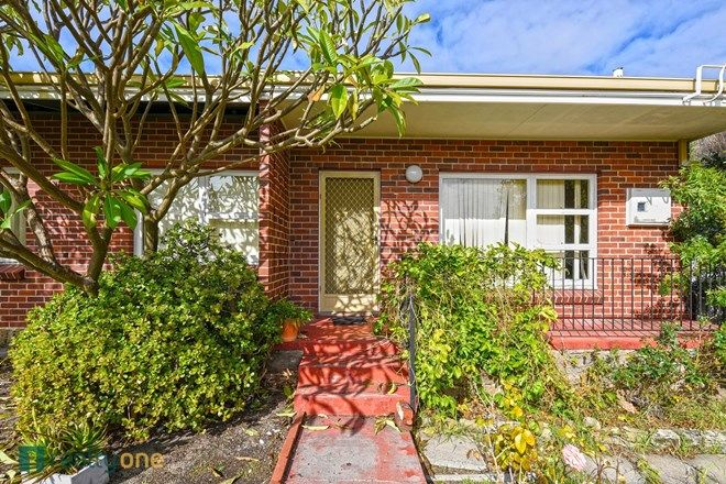 Picture of 3 Shelshaw Street, MELVILLE WA 6156