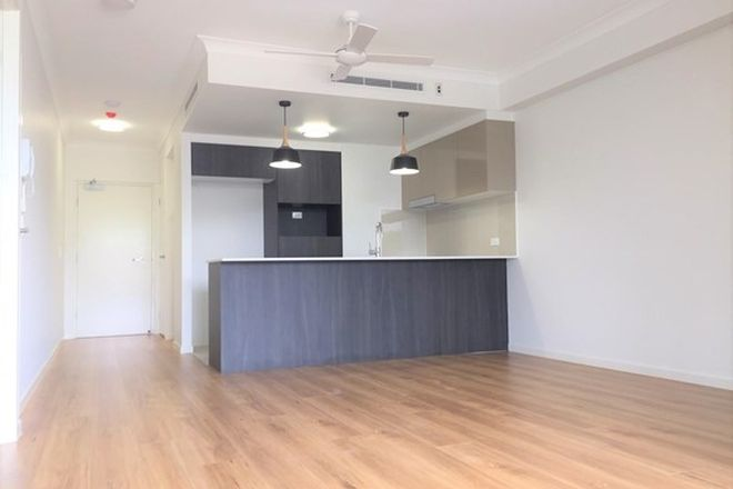 Picture of 105/20 Grout Street, MACGREGOR QLD 4109