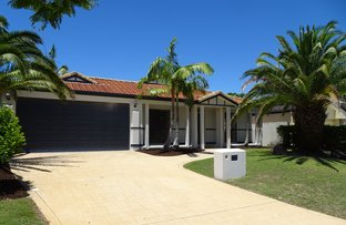 Picture of 8 Oyster Cove Promenade, Helensvale QLD 4212