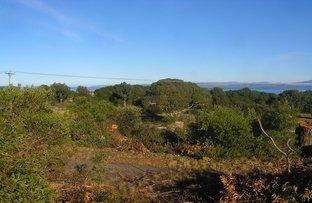 Picture of 558 Primrose Sands Road, Primrose Sands TAS 7173