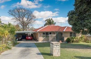 8 Wardlow Way, Balga WA 6061