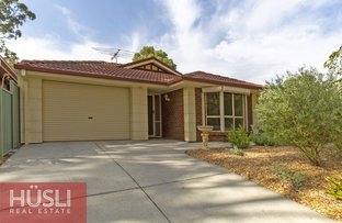 Picture of 111 Barracks Road, Highbury SA 5089