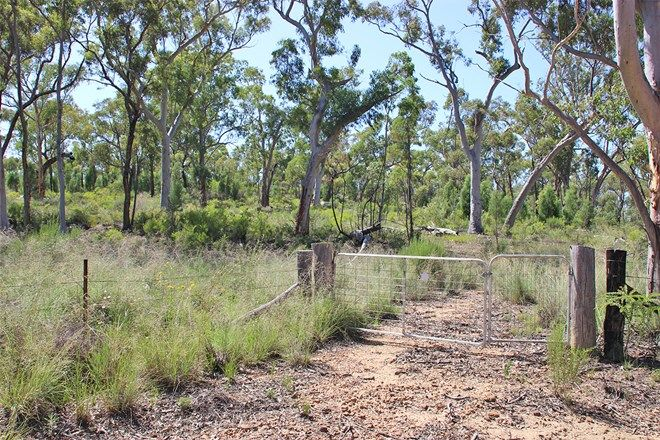 Picture of 4166 Baradine Road, COONABARABRAN NSW 2357