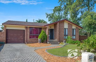 44 McIntyre Avenue, St Clair NSW 2759