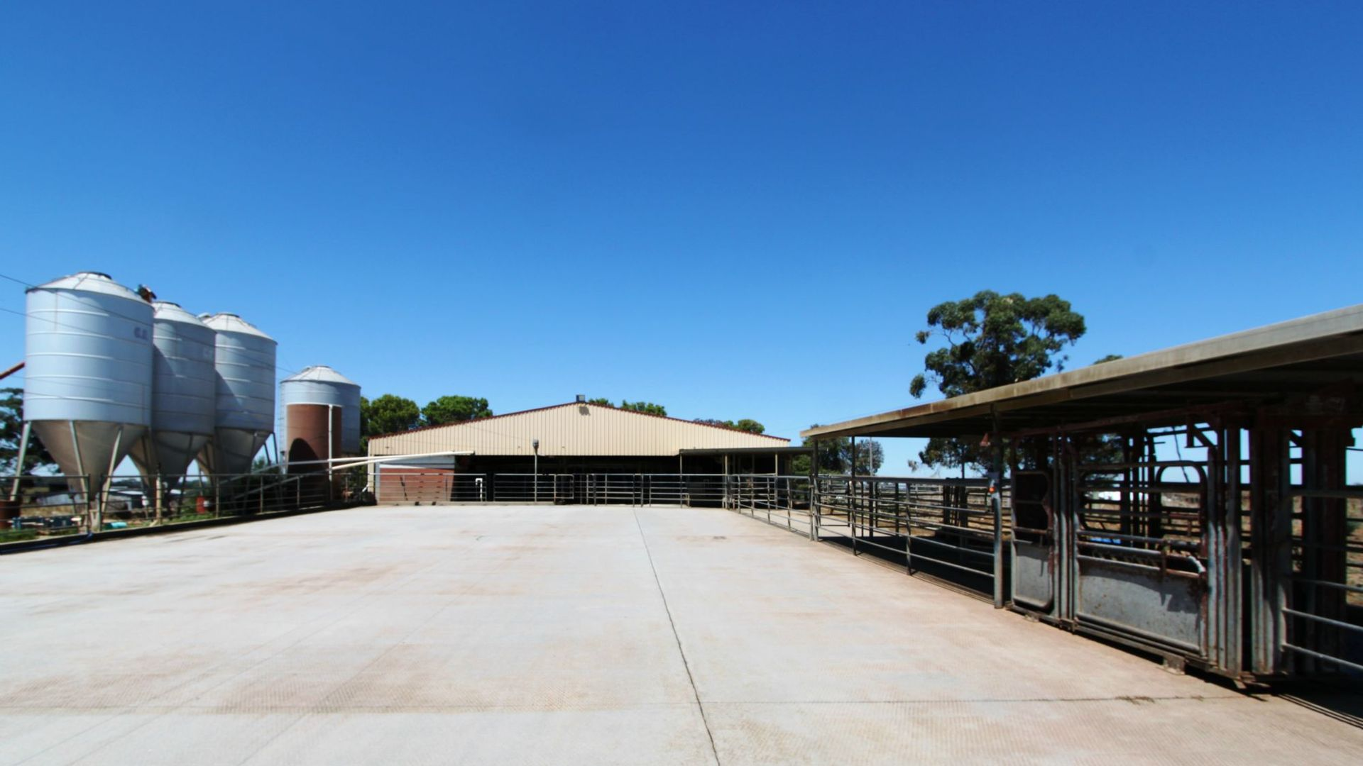 Finley NSW 2713, Image 1