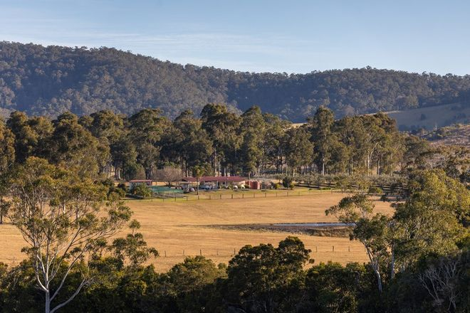 Picture of 1221 Manning Hill Road, BUNYAH NSW 2429