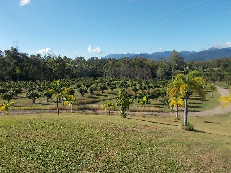 252560 Bruce Highway, Rungoo QLD 4849, Image 0