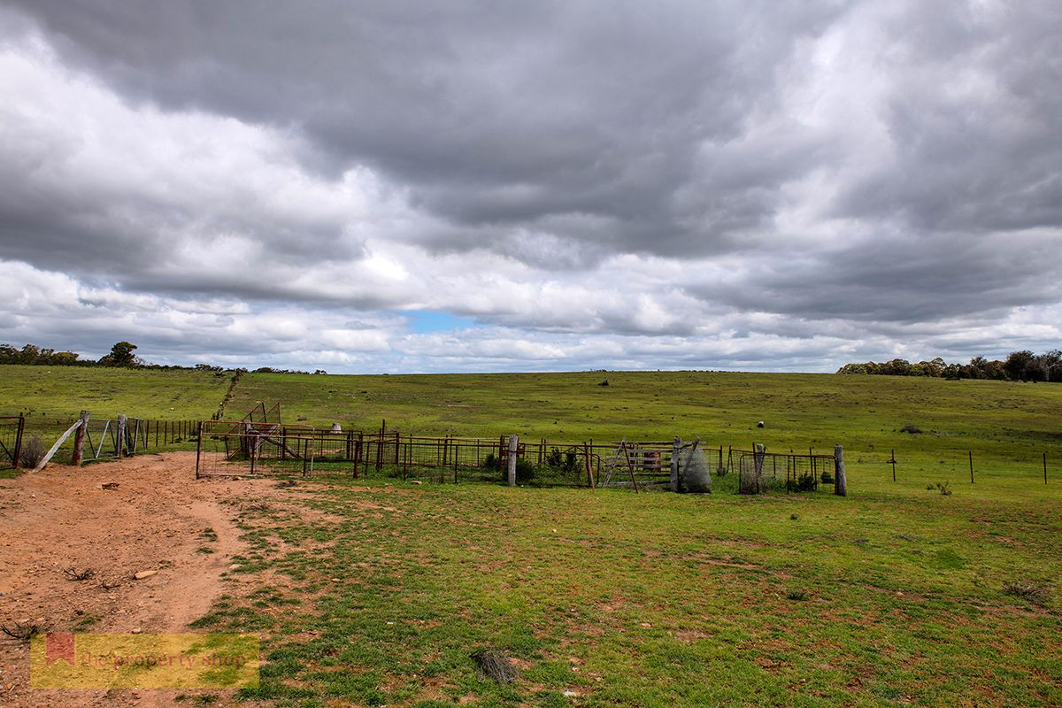 Lot 102 Aarons Pass Road, Mudgee NSW 2850, Image 2
