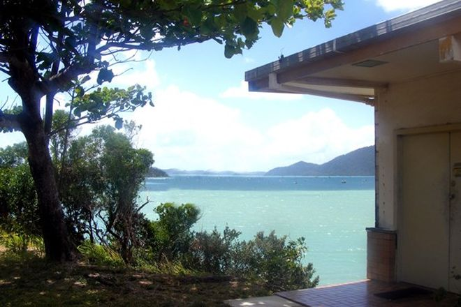 Picture of 3264 Shute Harbour Road, WHITSUNDAYS QLD 4802