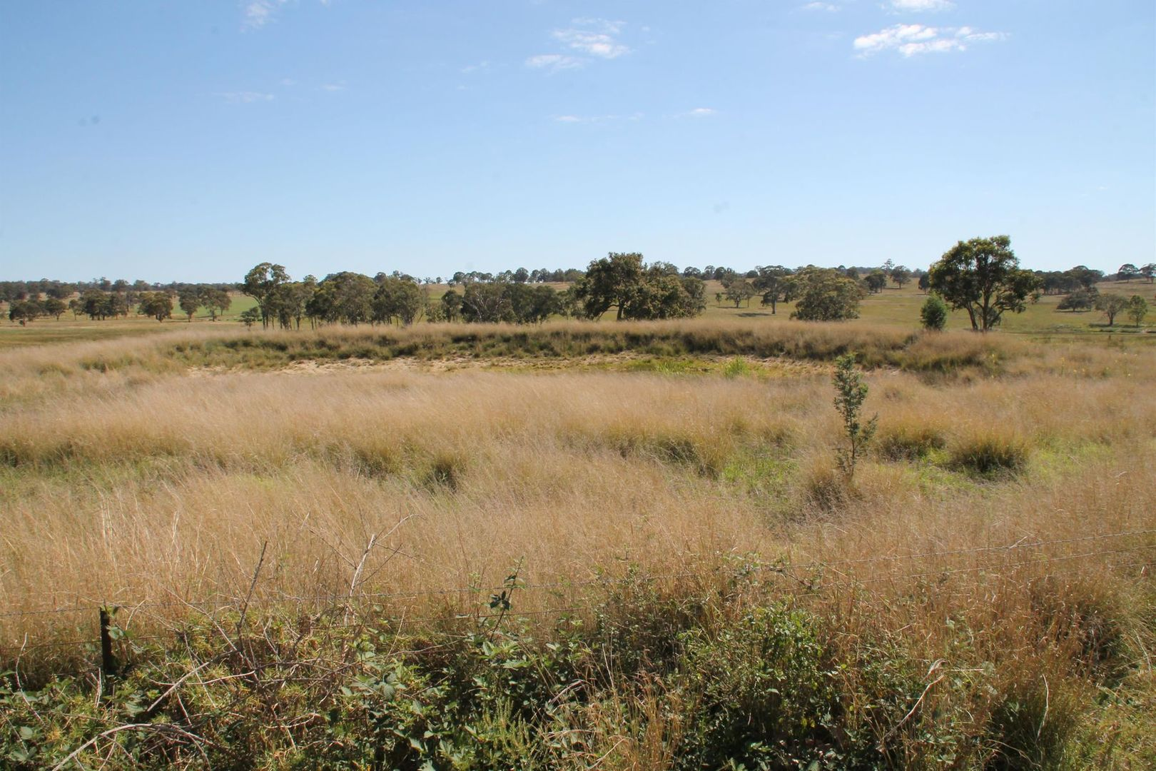 Lots 1 & 2 Wylie Creek Road, Maryland NSW 4377, Image 0