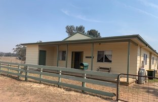 Picture of 1410 Maloneys Road, Mudgee NSW 2850