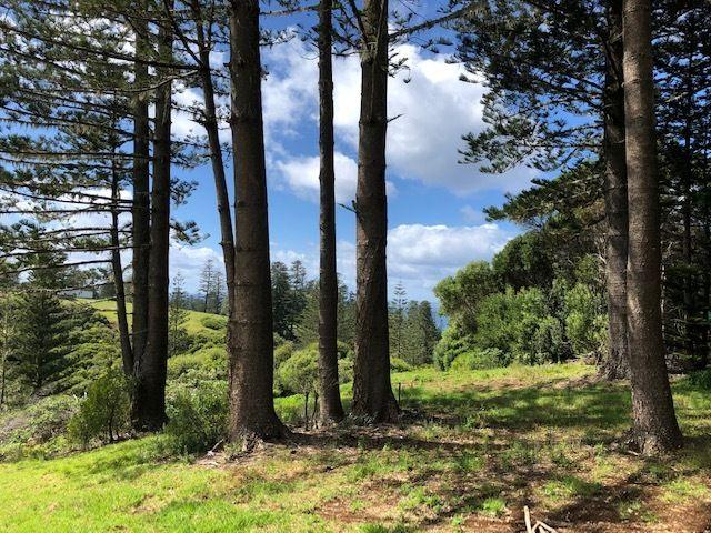 89a Bumboras Road, Norfolk Island NSW 2899, Image 0