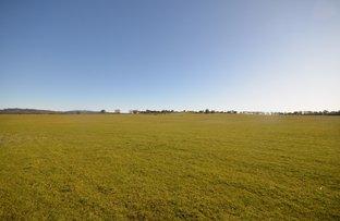 Picture of 174 Cornthwaites Road, Dunluce VIC 3472
