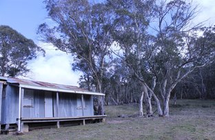 Picture of 1080 Hereford Hall Road, Braidwood NSW 2622