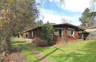 12 Hoskings Lane, Harrietville VIC 3741