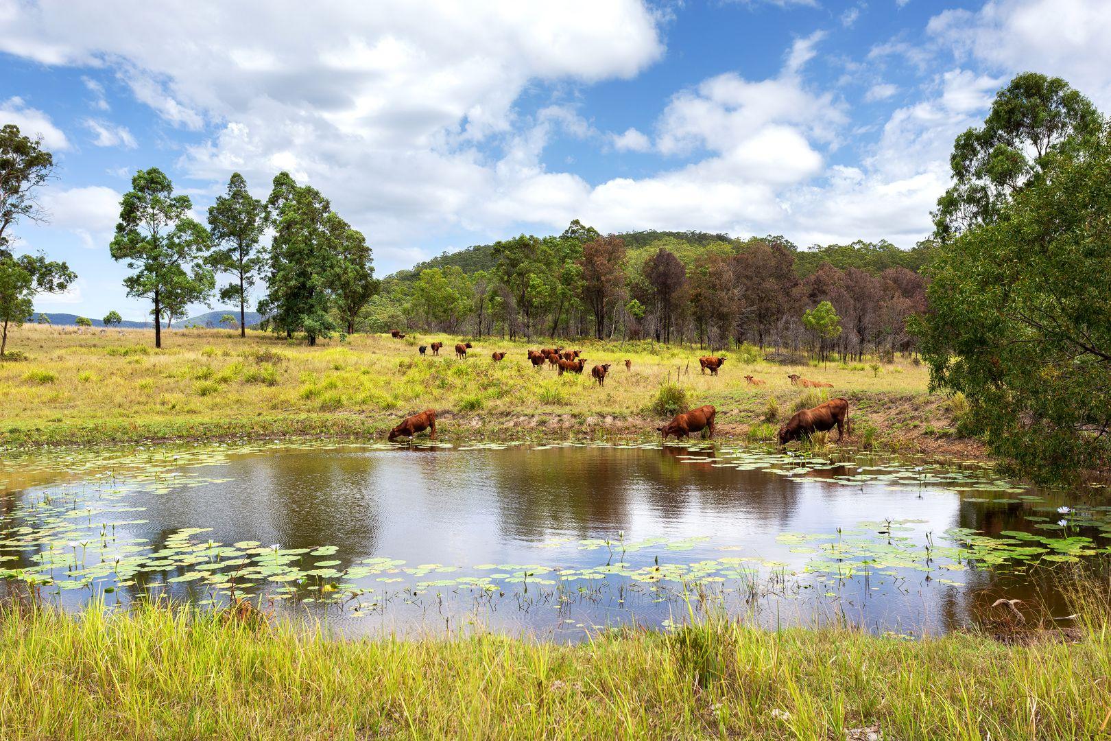 626 Black Flat Lane, Mount George NSW 2424, Image 0