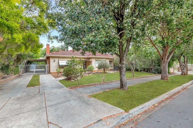 Picture of 5 Gilding Avenue, ROYSTON PARK SA 5070