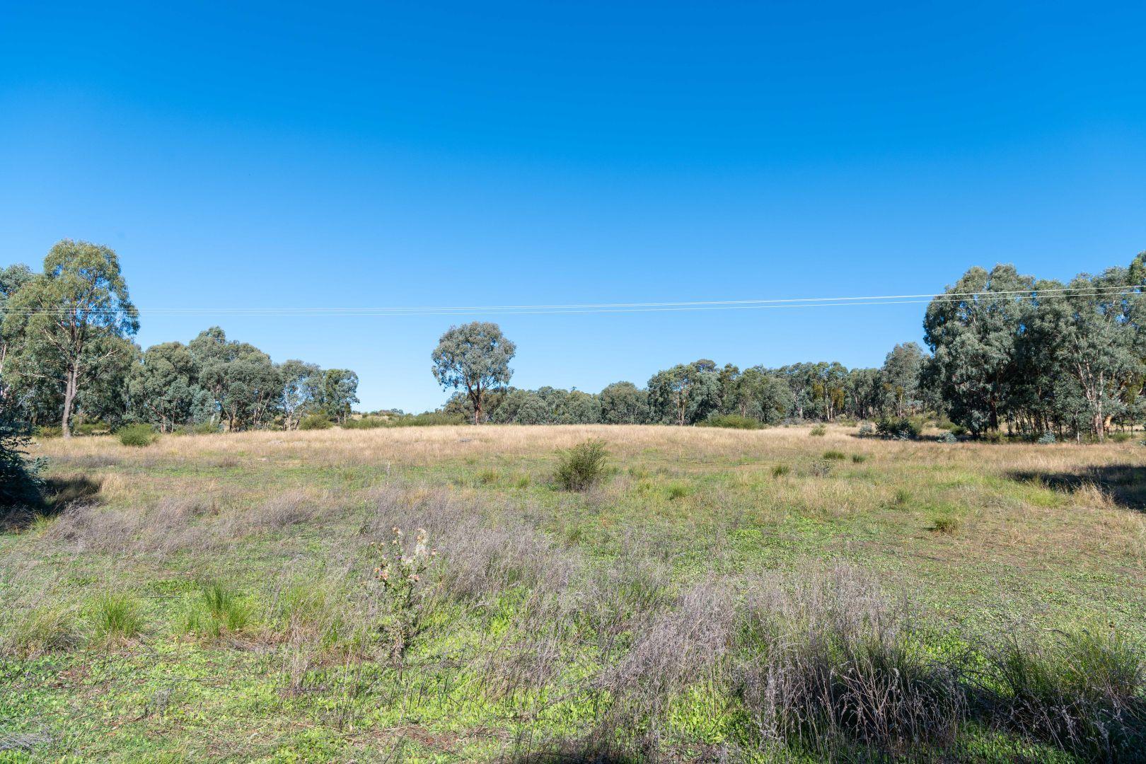 3 Taylors Flat Road, Taylors Flat NSW 2586, Image 2
