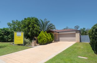 Picture of 6 Sepia Place, Griffin QLD 4503
