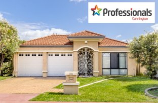 Picture of 71A Ashburton Street, Bentley WA 6102