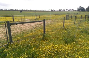 Picture of 1707 Barberton West Road, Yathroo WA 6507