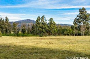 Picture of 535A Jacks Corner Road, Kangaroo Valley NSW 2577
