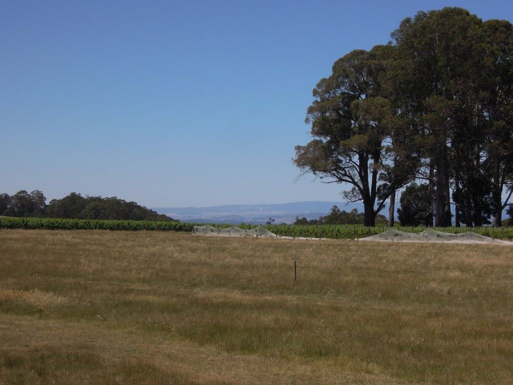 4830 Mansfield Whitfield Road, Whitlands VIC 3678, Image 2