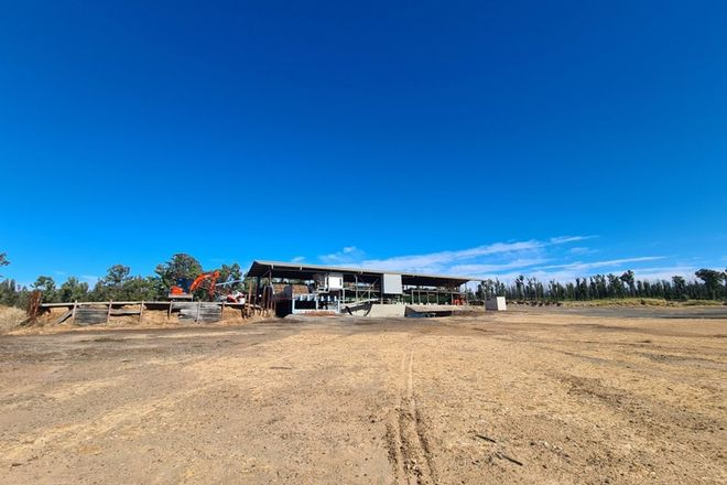 Picture of 2902 Old Tenterfield Road, WYAN NSW 2469