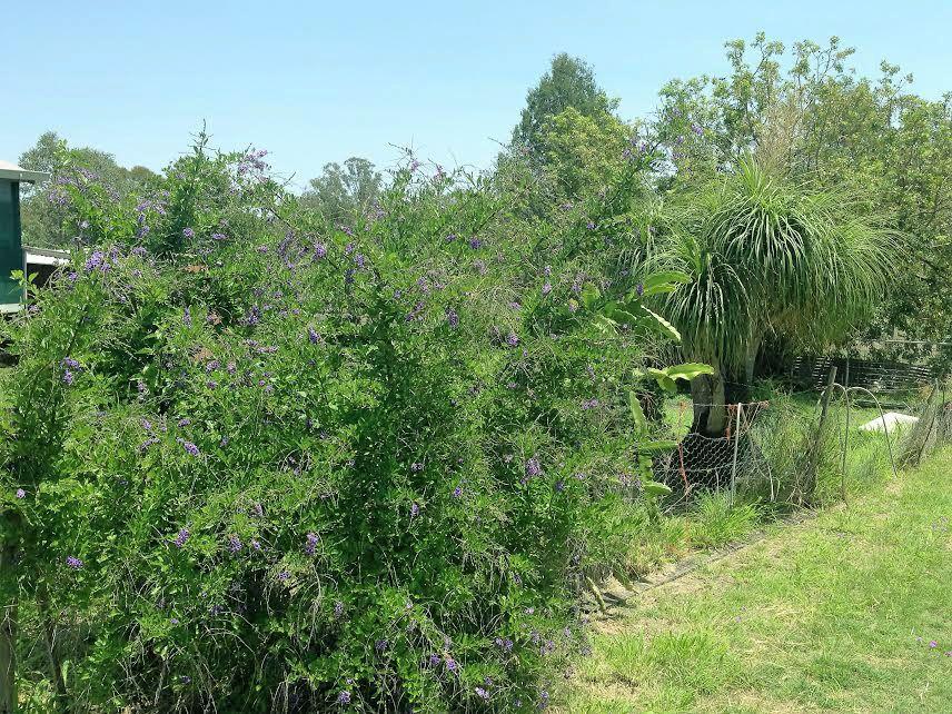 1582 Proston Boondooma Rd, Coverty QLD 4613, Image 1