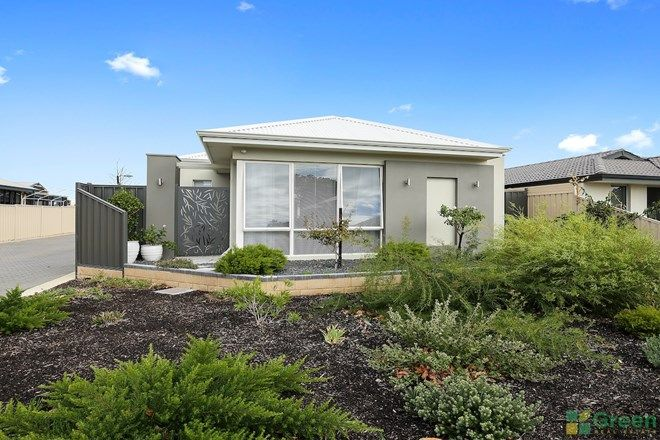 Picture of 16 Conebush  Circle, FALCON WA 6210