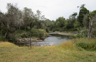 Picture of - Den Road, Mole Creek TAS 7304