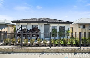 Picture of 105 Blackwood Meander, Yanchep WA 6035