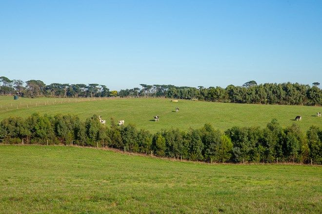 Picture of 5214 Great Ocean Road, ALLANSFORD VIC 3277
