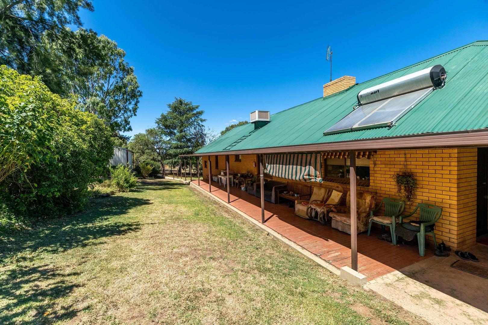 161 Mates Gully Rd, Tarcutta Via, Wagga Wagga NSW 2650, Image 2