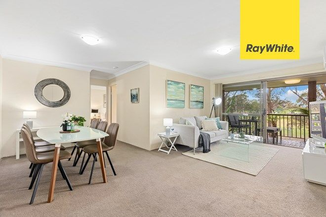 Picture of 56/17-19 Busaco Road, MARSFIELD NSW 2122