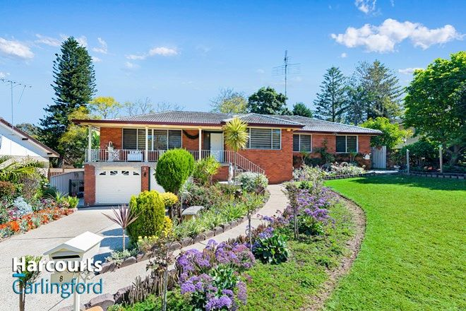 Picture of 8 Parklea Place, CARLINGFORD NSW 2118