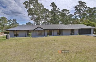 Picture of 80 Drover Cr, Jimboomba QLD 4280