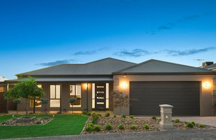 Picture of 18 Neryl Court, Mooroolbark VIC 3138