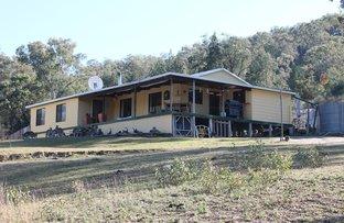 699 Wearnes Road, Bundarra NSW 2359