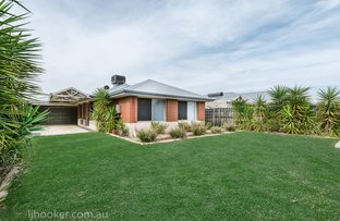 Picture of 20 Simmonds Pass, Ellenbrook WA 6069