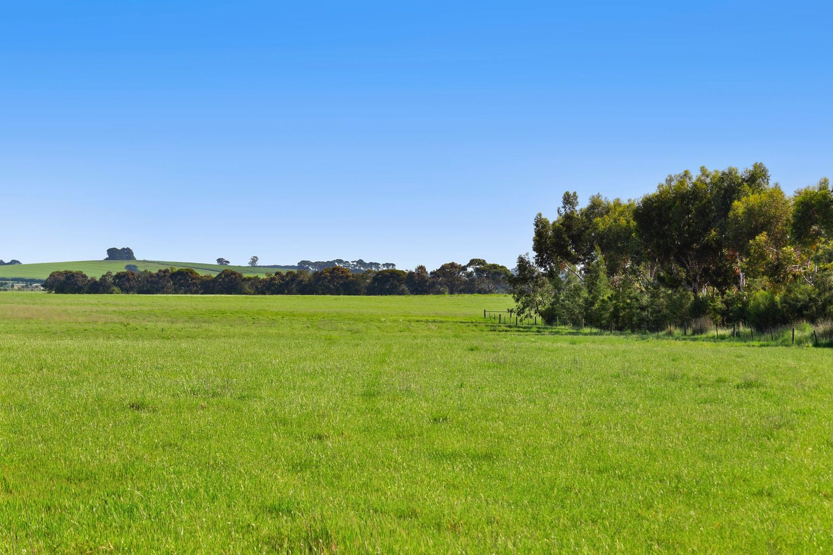 370 Shelford Road, Winchelsea VIC 3241, Image 1